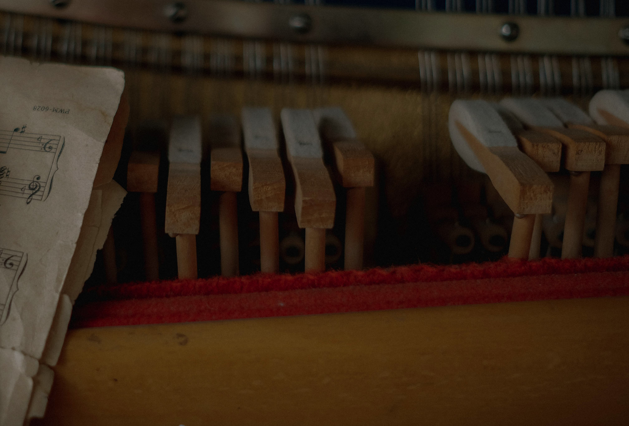 piano dampeners